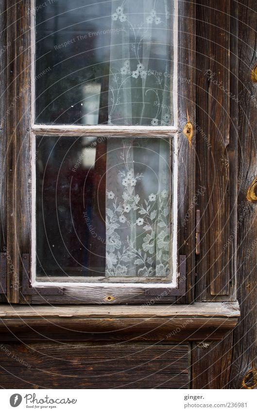 Durchblick im Ansatz vorhanden alt Einsamkeit Fenster Holz braun Tür geschlossen leer trist Teilung schäbig Eingang durchsichtig Gardine Unbewohnt verwittert