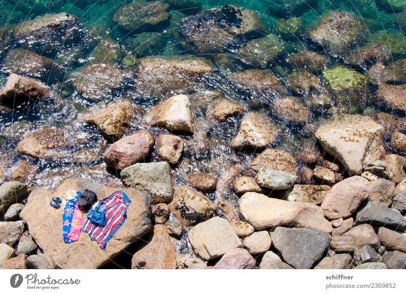 Hai-| Fischfutter - schon im Wasser Freizeit & Hobby Ferien & Urlaub & Reisen Tourismus Sommer Sommerurlaub Sonne Sonnenbad Strand Meer Wellen Umwelt Natur