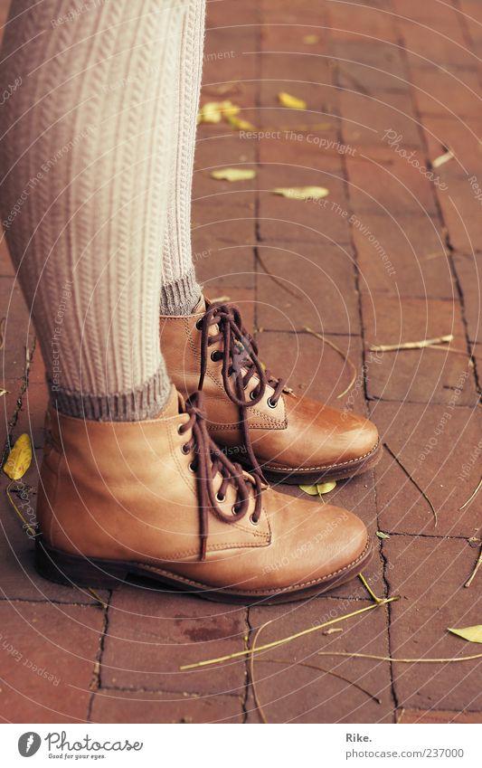 Stillstehen. Mensch feminin Beine Fuß 1 Natur Herbst Blatt Mode Strümpfe Strumpfhose Leder Schuhe Stiefel Wanderschuhe warten trendy stagnierend Pflastersteine