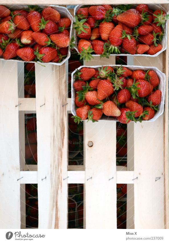 Schalen Lebensmittel Frucht Ernährung Bioprodukte frisch lecker saftig süß Erdbeeren Obstschale Obstkiste Ernte Farbfoto Außenaufnahme Muster Menschenleer