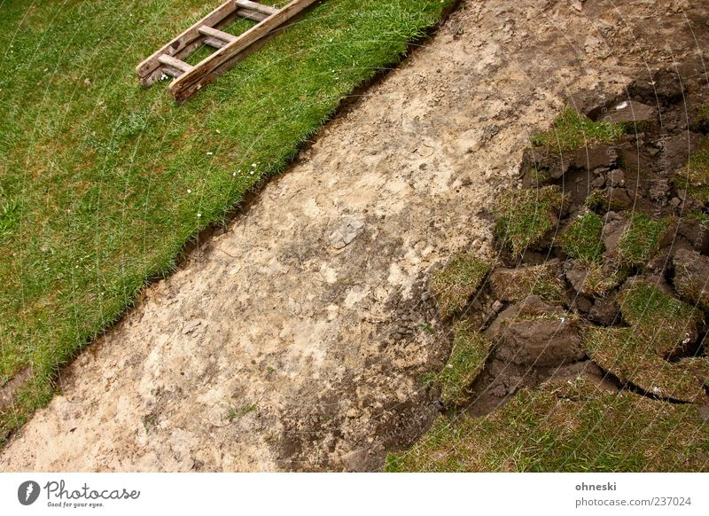 Neuer Weg Gras Garten Wiese Wege & Pfade Leiter bauen grün Arbeit & Erwerbstätigkeit Sand Farbfoto Außenaufnahme Strukturen & Formen Menschenleer