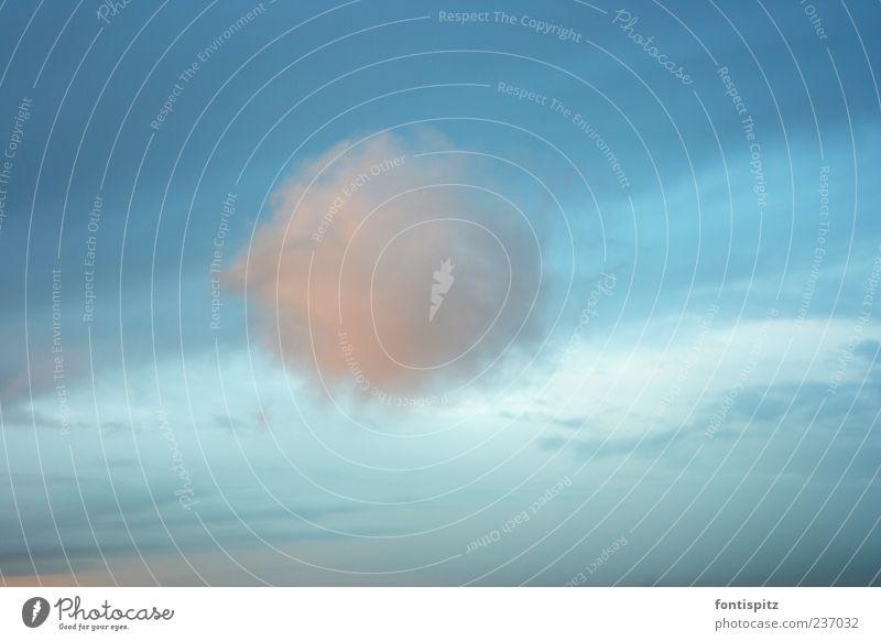 Zuckerwatte ruhig Himmel Wolken Schönes Wetter Watte blau rosa weiß Stimmung Geborgenheit Gelassenheit Umwelt fluffig Farbfoto Außenaufnahme Menschenleer