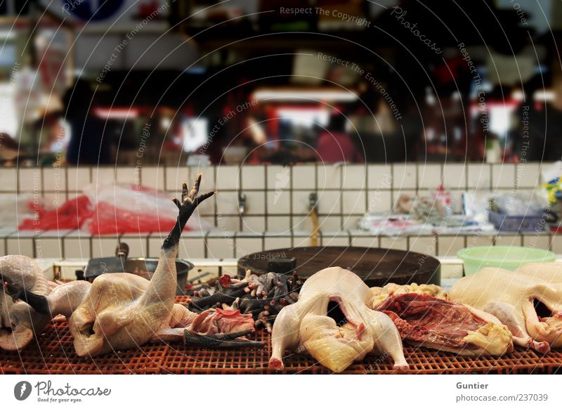 am Ende satt Totes Tier Krallen mehrfarbig gelb rot schwarz weiß Tod Lebensmittel verarbeiten Schlachtung Hähnchen Asien Metzger Fliesen u. Kacheln Farbfoto