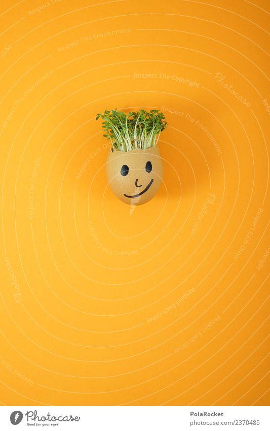 #S# Don Kressos II Lebensmittel Glück Freude Ei Ostern Kresse Kunst Kreativität Witz orange Pflanze nachhaltig ökologisch Wachstum Gesicht Kindheit Basteln