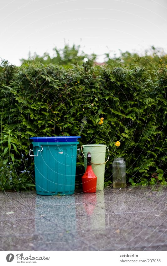 Terrasse im Regen Natur Wasser Pflanze Sommer ruhig Blüte Garten Umwelt nass Wachstum Blühend Urelemente Vase Müllbehälter