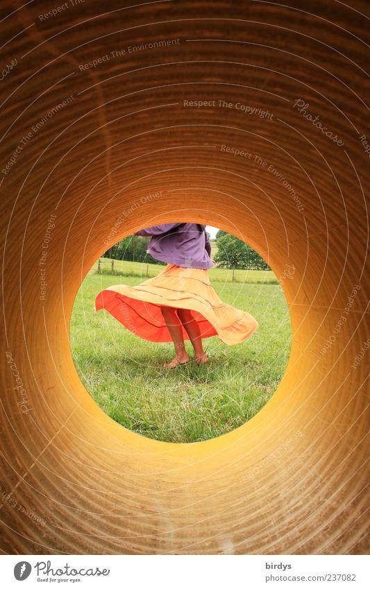 Focus Mensch Jugendliche schön Junge Frau Freude Leben Wiese feminin Bewegung natürlich Beine orange wild Tanzen ästhetisch Fröhlichkeit