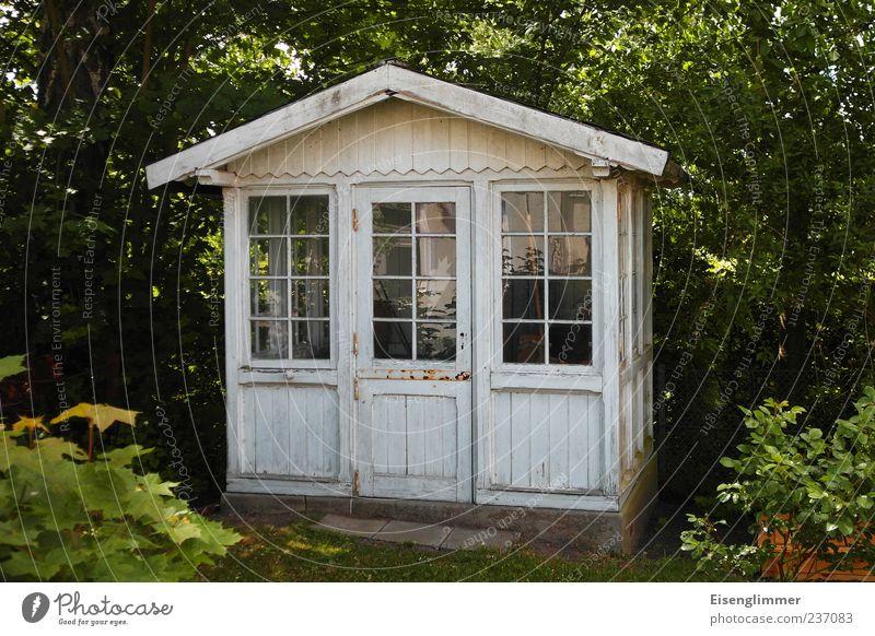 Gartenlaube deluxe Natur weiß Ferien & Urlaub & Reisen Pflanze Sommer Blatt Haus Umwelt Architektur Tür Freizeit & Hobby Idylle Hütte Gartenarbeit