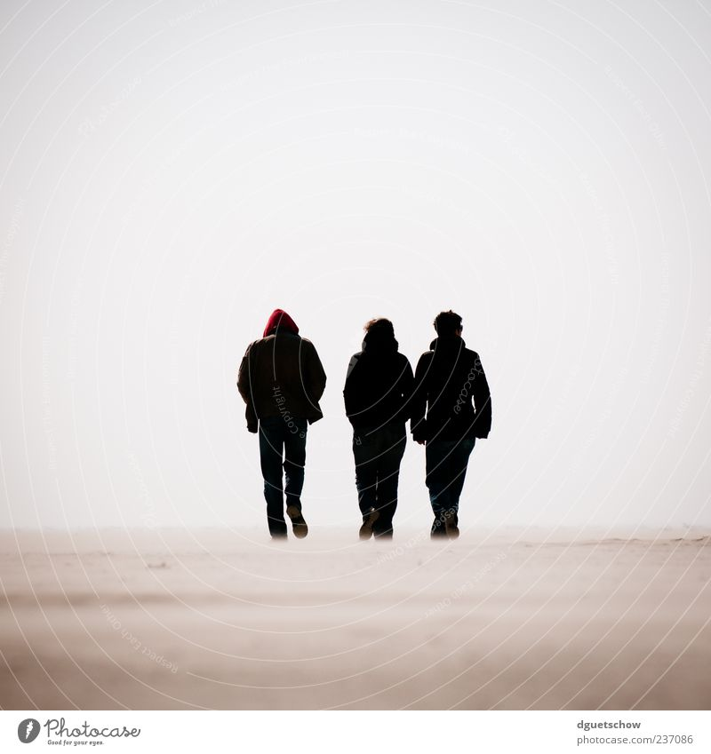 3 Mensch Frau Mann Meer Strand ruhig Erwachsene Ferne Sand gehen wandern maskulin Ausflug Spaziergang Nordsee Gelassenheit