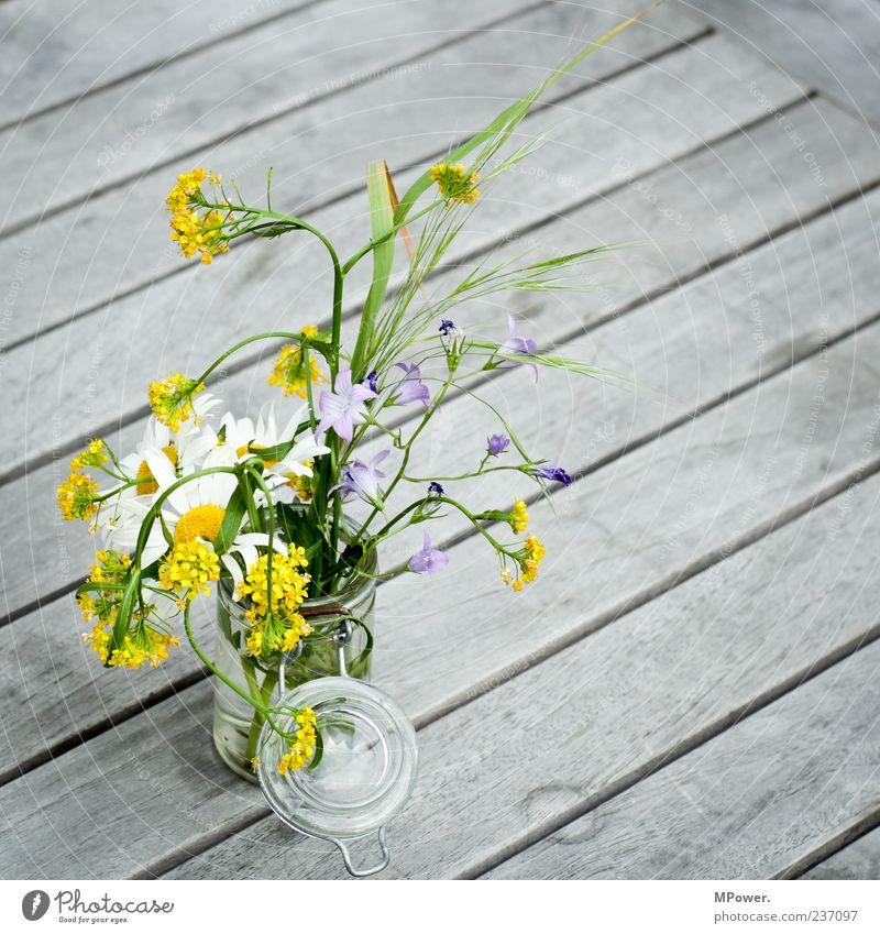 Einweckblumen Blumenstrauß Stillleben Holztisch Blumenvase Frühlingsblume Tischdekoration Frühblüher Einmachglas