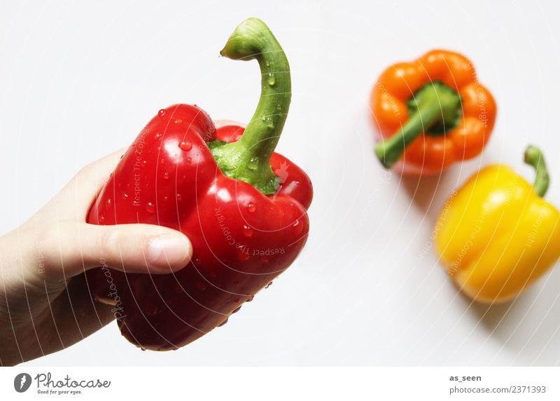 Frische rote Paprika Lebensmittel Gemüse Ernährung Essen Bioprodukte Vegetarische Ernährung Diät kochen & garen sortieren Gesundheit Wellness Sinnesorgane Küche
