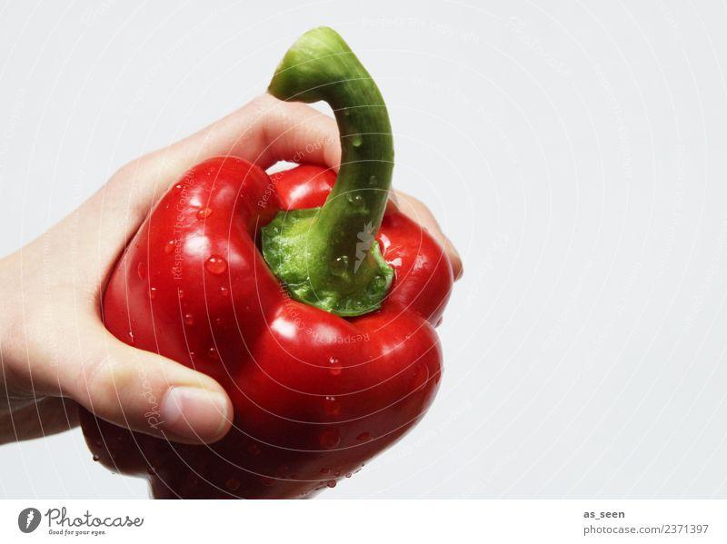 Frische rote Paprika Gemüse Ernährung Essen Bioprodukte Vegetarische Ernährung Diät Gesundheit Wellness Leben Wohlgefühl Sinnesorgane Frucht festhalten exotisch