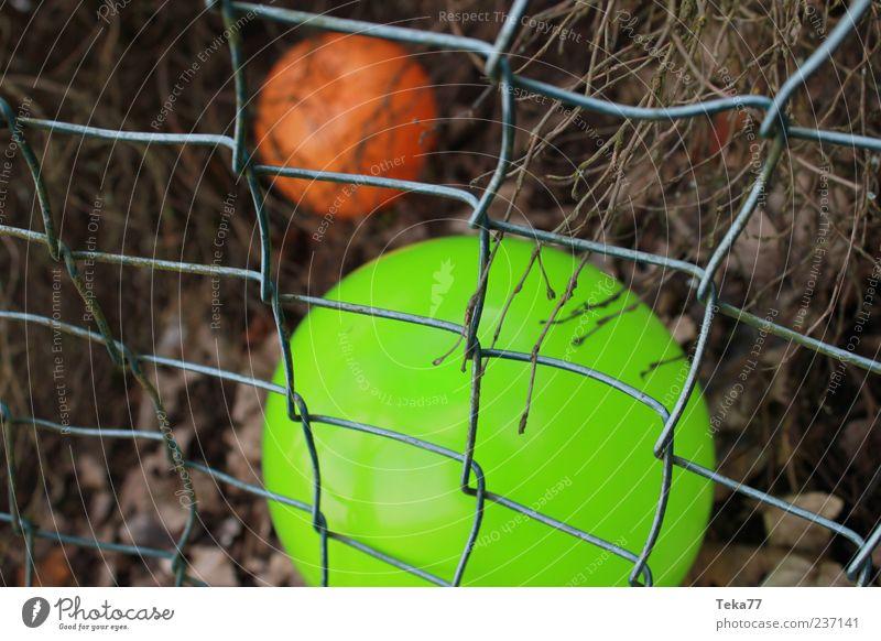 gestern gespielt Spielzeug Luftballon Kugel authentisch außergewöhnlich trist grün einzigartig Farbe Farbfoto Außenaufnahme Menschenleer Schwache Tiefenschärfe