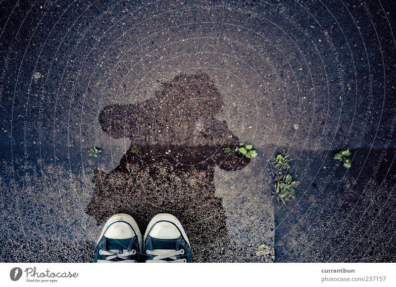 Es liegen Welten zwischen uns... Frau grün Schuhe stehen Asphalt Pfütze Chucks Anschnitt Mensch Wasserspiegelung