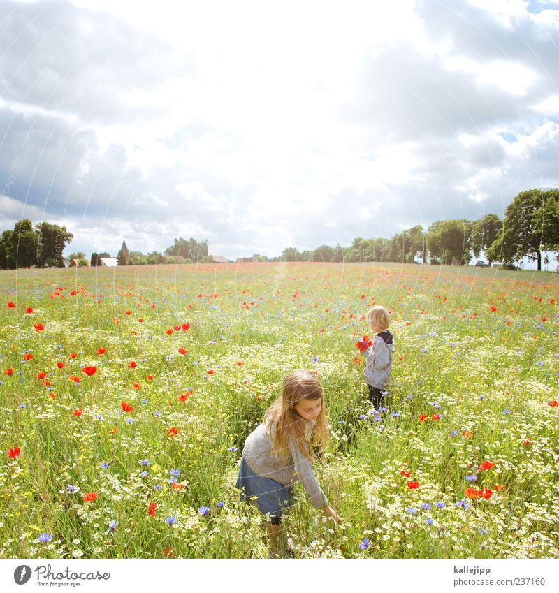 internationaler kindertag Mensch Kind Natur Ferien & Urlaub & Reisen Sonne Sommer Mädchen Blume ruhig Umwelt Landschaft Familie & Verwandtschaft Leben Junge