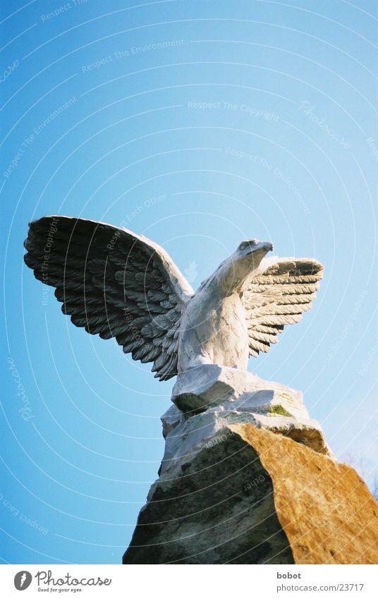Stoned IV Statue Adler stagnierend Feder Sonnenaufgang Beton Kunst Bildhauerei Vogel Handwerk Greifvogel Flügel fliegen Himmel blau Stein versteinert