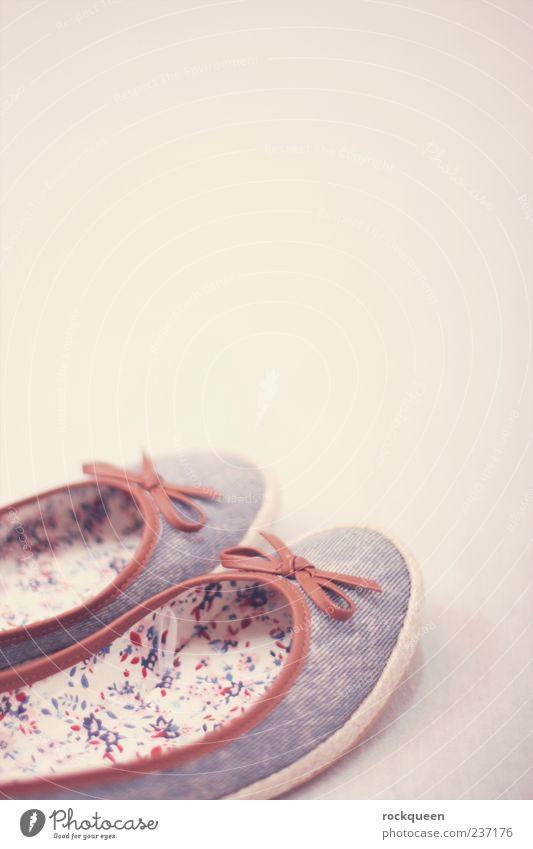 Going for a walk feminin Mode Bekleidung Schuhe schön blau braun rosa Ballerina Schleife Farbfoto mehrfarbig Innenaufnahme Nahaufnahme Detailaufnahme