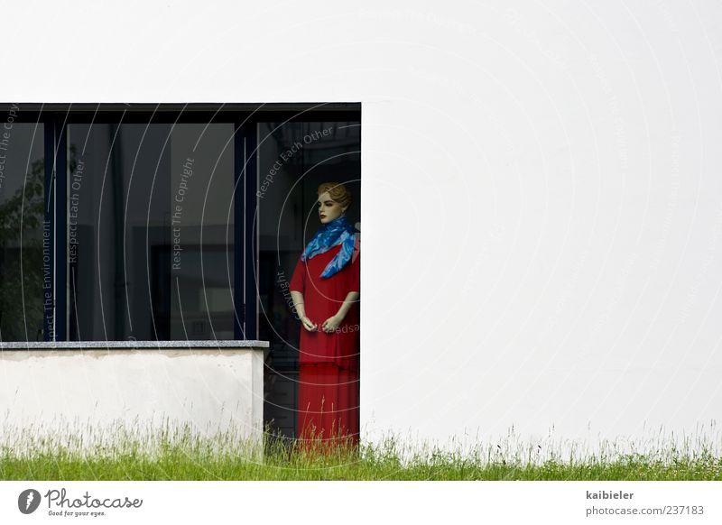 Erwartungshaltung Häusliches Leben Wohnung Garten feminin Frau Erwachsene Wiese Einfamilienhaus Terrasse Fenster Blick stehen warten rot weiß Einsamkeit skurril
