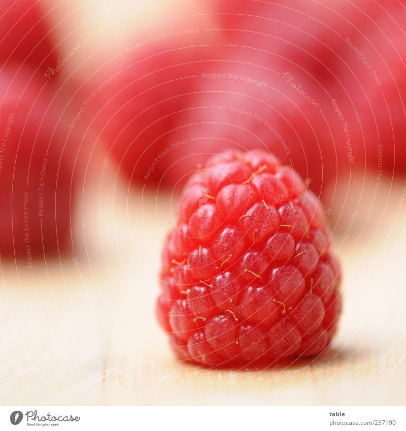 red power Natur rot Gesundheit liegen Kraft Frucht natürlich Lebensmittel warten frisch Ernährung ästhetisch einzigartig Sauberkeit rein Appetit & Hunger