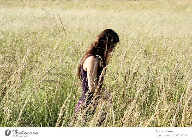 Im Feld feminin Junge Frau Jugendliche Erwachsene 1 Mensch Landschaft Schönes Wetter Rock Kleid brünett langhaarig wählen beobachten genießen frei schön dünn