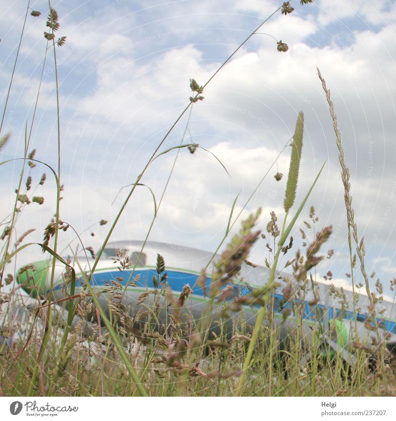 Tiefflieger... Himmel Natur blau weiß grün Ferien & Urlaub & Reisen Pflanze Wolken Umwelt Wiese Gefühle Gras grau außergewöhnlich Flugzeug Tourismus