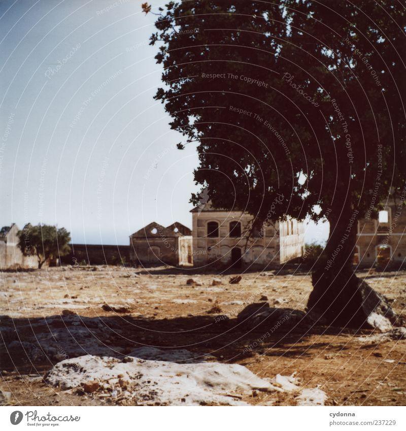 Schattiges Plätzchen Natur Ferien & Urlaub & Reisen Baum Sommer Einsamkeit ruhig Haus Ferne Erholung Umwelt Landschaft Architektur Freiheit Erde Ausflug