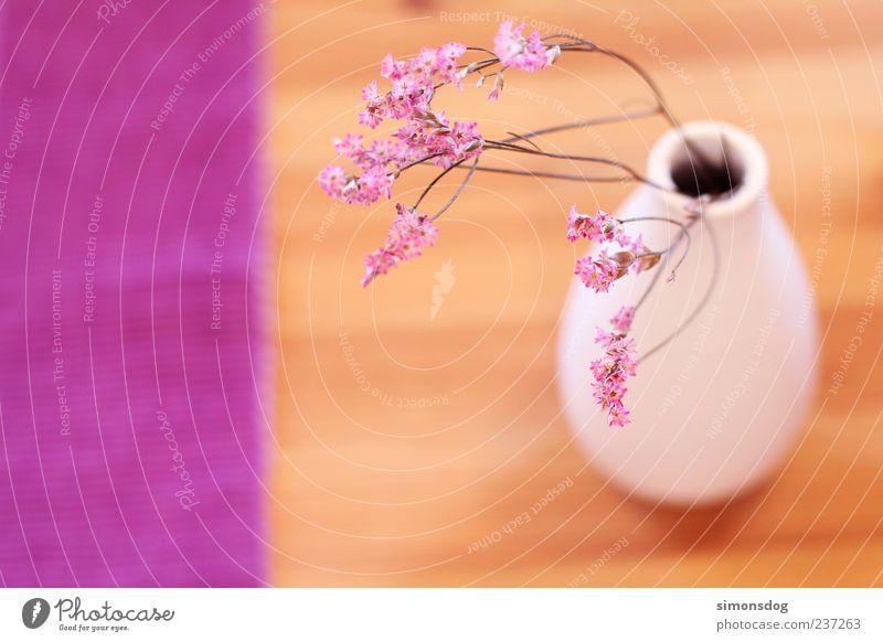 blumenvasenflagge Vase außergewöhnlich Tisch violett weiß Blüte Holz Keramik natürlich harmonisch Farbenspiel rosa Dekoration & Verzierung rund Blume