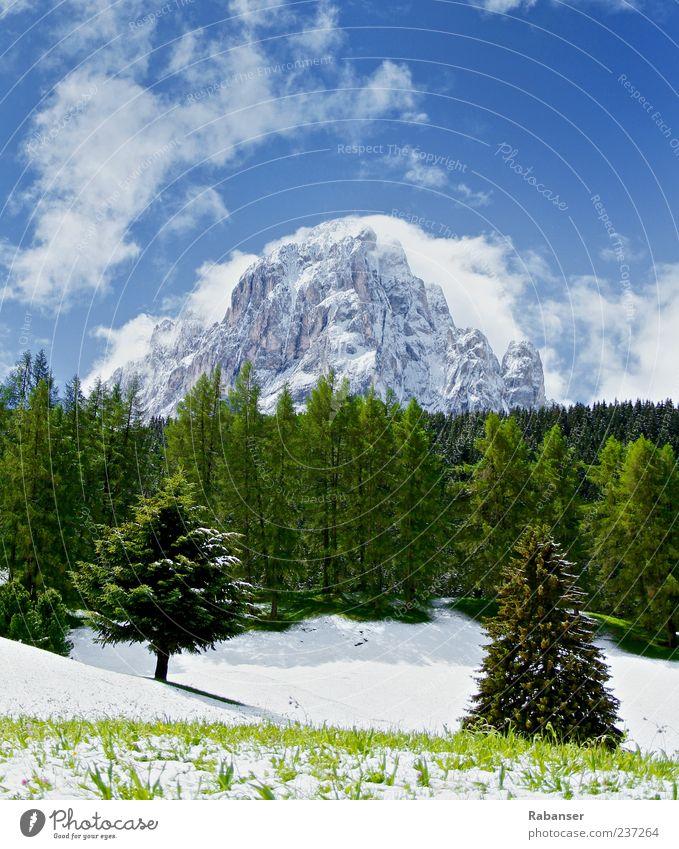 Endlich Sommer!! Himmel Natur blau weiß grün Wolken schwarz Wald Umwelt Landschaft Wiese kalt Schnee Berge u. Gebirge Eis