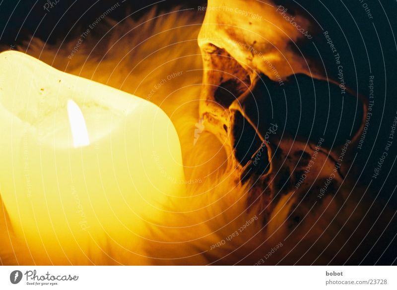 voodoo V dunkel Tod Kerze Fell historisch Gottesdienst mystisch Zauberei u. Magie unheimlich Skelett Teufel Schädel kultig Kerzenschein Voodoo