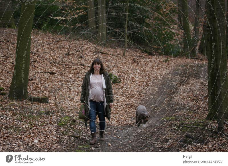 junge schwangere Frau mit langen brünetten Haaren geht mit ihrem Hund auf einem Waldweg spazieren Mensch feminin Junge Frau Jugendliche Erwachsene 1 30-45 Jahre