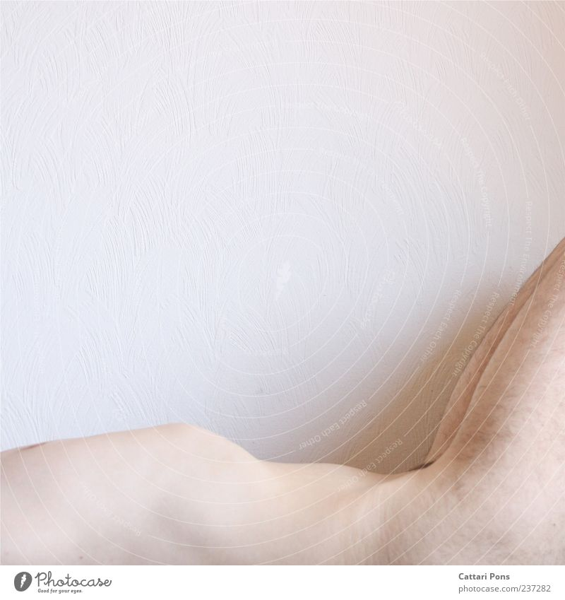 Berg & Tal Mensch Mann Jugendliche weiß Erwachsene nackt hell Körper liegen maskulin Behaarung Junger Mann dünn Bauch Anschnitt Brustkorb
