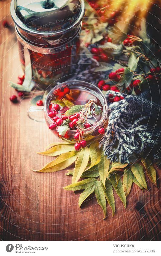 Herbst Tee auf Holztisch mit Lauf und Schal Lebensmittel Getränk Heißgetränk Stil Design Alternativmedizin Gesunde Ernährung Häusliches Leben Wohnung Rose