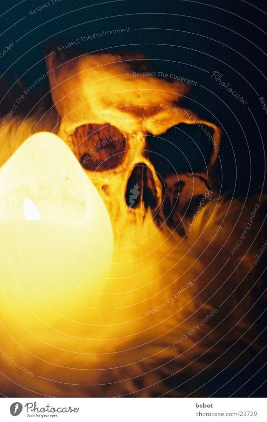 voodoo IV Voodoo kultig Kerze dunkel Nacht Kerzenschein Skelett mystisch Fell Zauberei u. Magie unheimlich Teufel historisch Schädel Beschwörung beschwören