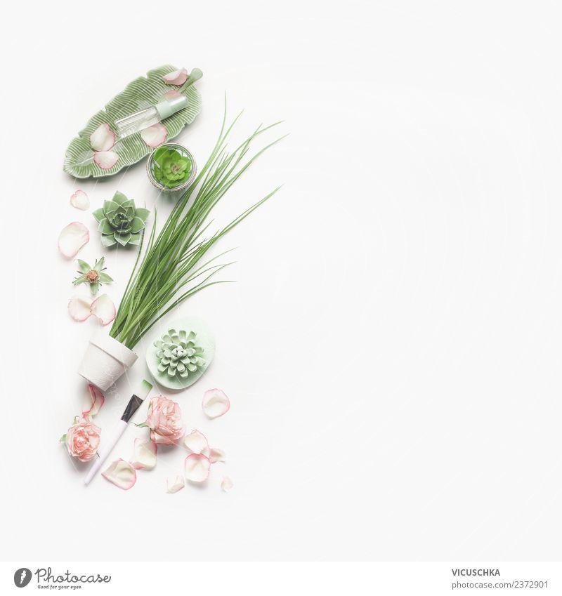 Grüne Kosmetik für Gesichtspflege Natur Pflanze schön grün Gesundheit Hintergrundbild Stil Design modern kaufen Wellness Rose Beautyfotografie Körperpflege