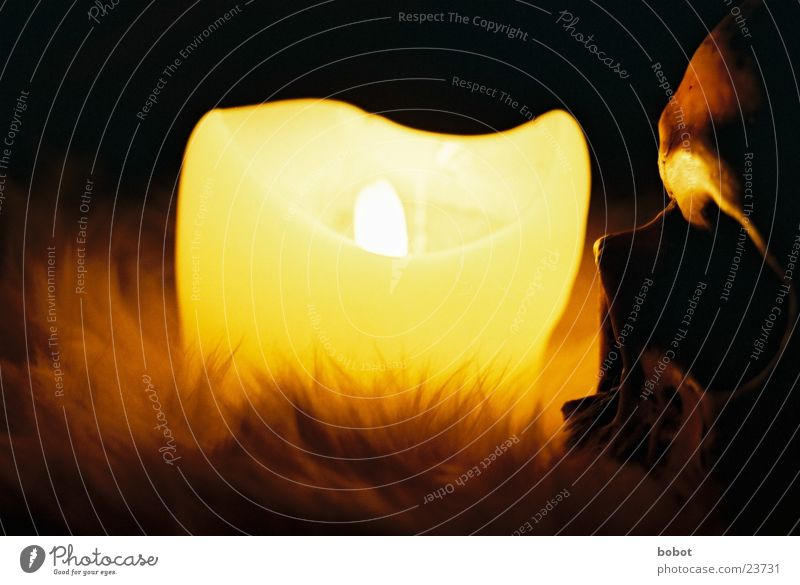 voodoo III Voodoo kultig Kerze dunkel Nacht Kerzenschein Skelett mystisch Fell Zauberei u. Magie unheimlich Teufel historisch Schädel Beschwörung beschwören