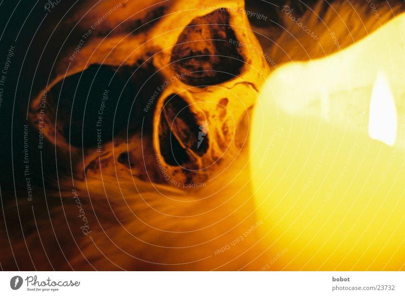 voodoo II Voodoo kultig Kerze dunkel Nacht Kerzenschein Skelett mystisch Fell Zauberei u. Magie unheimlich Teufel historisch Schädel Beschwörung beschwören