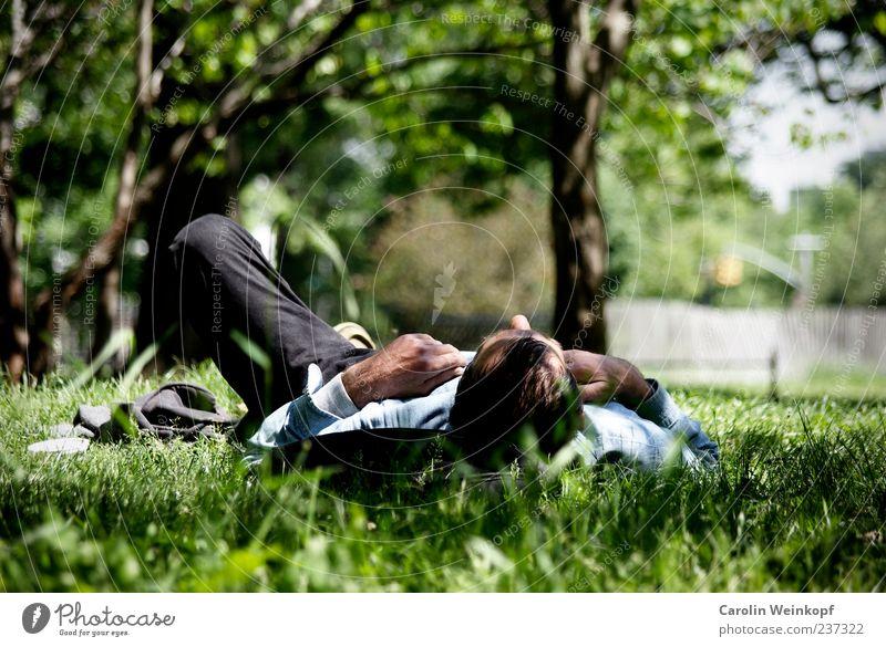 Relax. Sommer ruhig Erholung Wiese Leben Gefühle Frühling Freiheit Gras Park Zufriedenheit Freizeit & Hobby liegen Lifestyle Pause genießen