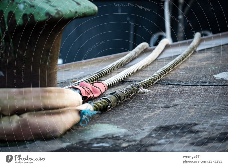 gut behütet | im sicheren Hafen Wasserfahrzeug Seil Tauziehen fest lang maritim grün rot schwarz Anlegestelle Poller Festmacher ankern Sicherheit Bordwand