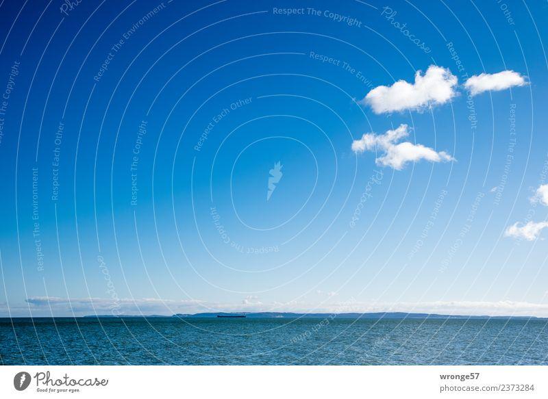 Horizont und Meer Landschaft Luft Wasser Himmel Wolken Frühling Schönes Wetter Wellen Küste Bucht Ostsee frei Unendlichkeit maritim blau weiß Wasseroberfläche
