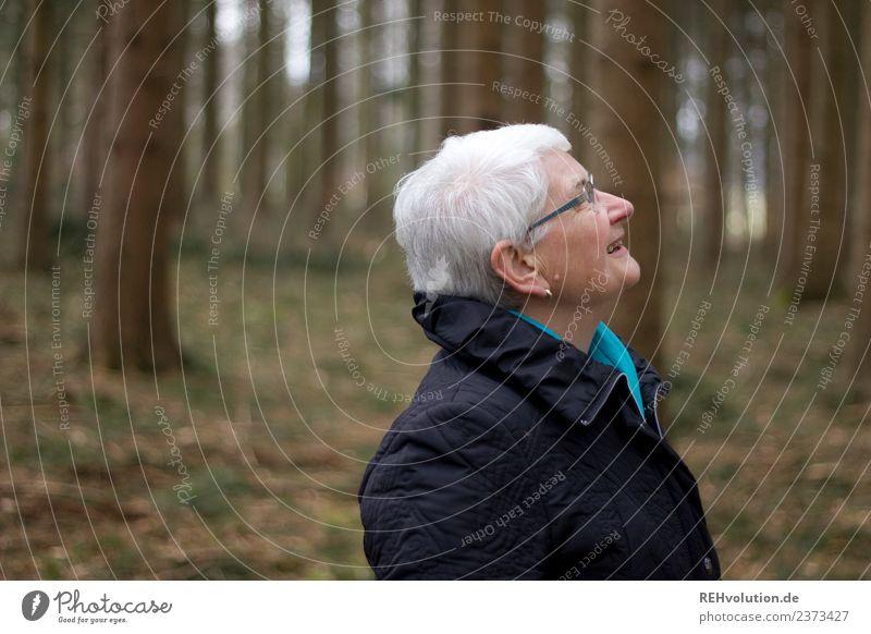 Seniorin schaut im Wald nach oben Mensch feminin Großmutter Kopf 1 60 und älter Umwelt Natur Herbst Winter Jacke Brille weißhaarig beobachten stehen alt