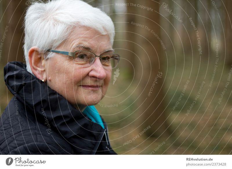 Oma im Wald Lifestyle Erholung ruhig Mensch feminin Frau Erwachsene Weiblicher Senior Großmutter Leben Gesicht 1 60 und älter Umwelt Natur Herbst Winter Baum