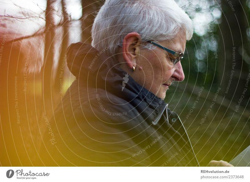Seniorin schaut im Herbstwald auf ihr Smartphone Frau Mensch Natur alt Wald Winter Erwachsene Leben Umwelt natürlich feminin Freizeit & Hobby Kommunizieren