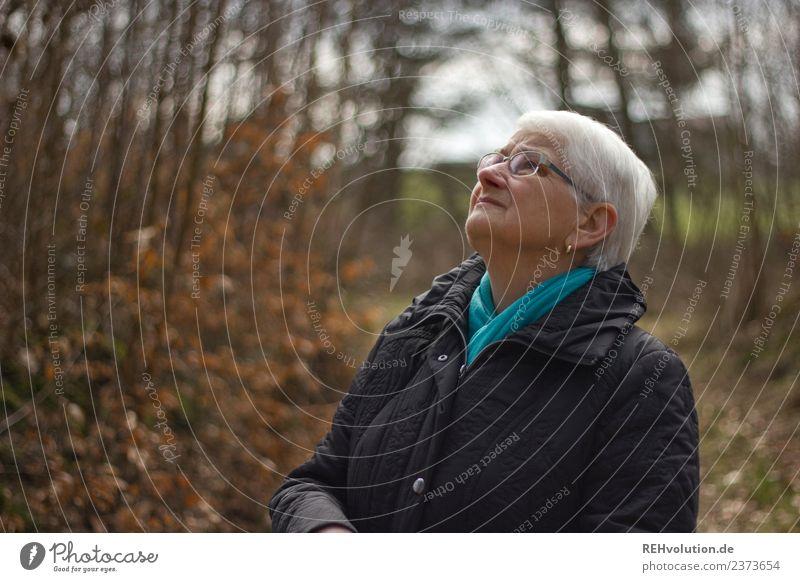 Seniorin schaut im Herbstwald nach oben Frau Mensch Natur alt Landschaft Wald Erwachsene Leben Religion & Glaube Umwelt natürlich Traurigkeit feminin