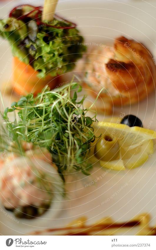 Vorspeise Lebensmittel Fisch Salat Salatbeilage Frucht Kräuter & Gewürze Ernährung Mittagessen Festessen Teller Duft frisch schön Kresse Zitrone Oliven