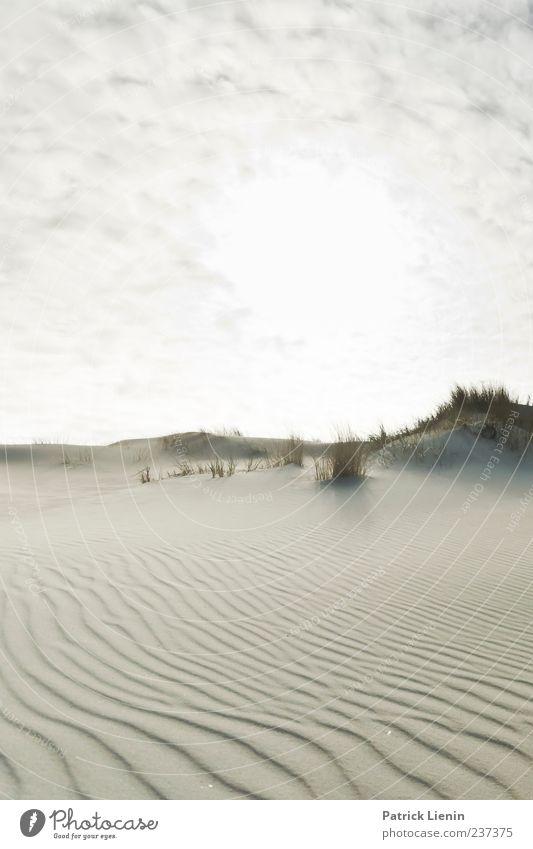 Spiekeroog | Neverending Dream Himmel Natur Pflanze Meer Strand Ferne Umwelt Landschaft oben Küste Freiheit Sand Stimmung Wetter Wellen Klima