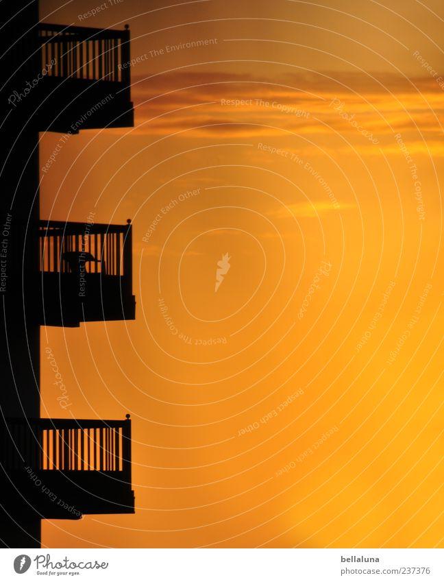 Es war die Nachtigall... Himmel Wolken Haus schwarz Architektur Gebäude Luft orange Hochhaus Bauwerk Balkon Schönes Wetter Bildausschnitt Anschnitt Umwelt
