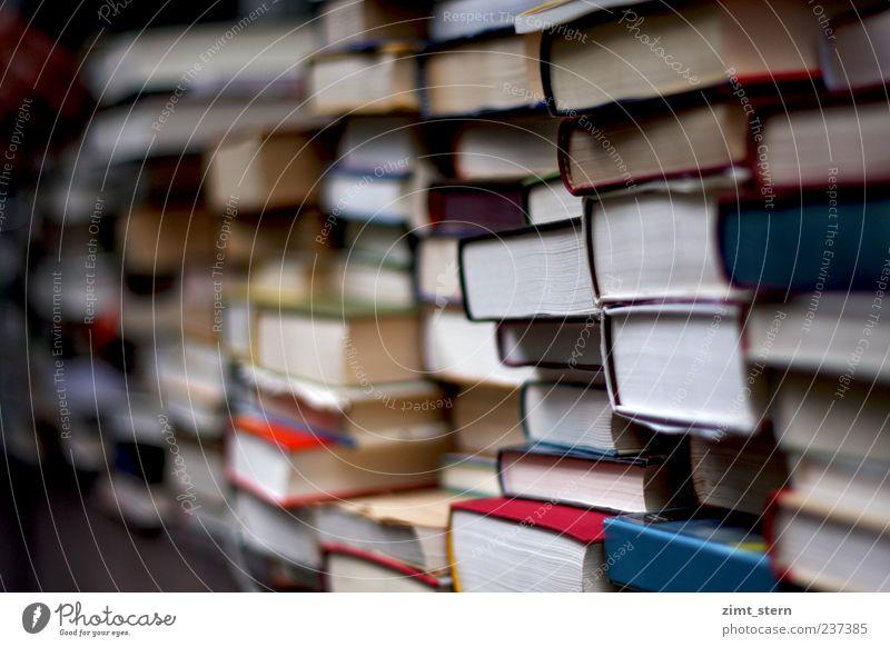 Stapel voller Weisheit blau weiß rot Denken Buch lernen Bildung Wissenschaften Inspiration eckig Printmedien Ordnung Ausdauer Buchladen fleißig Bibliothek