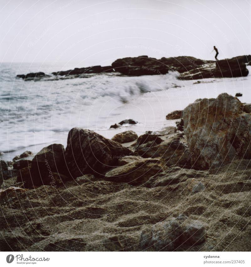 Schwimmer Mensch Himmel Natur Wasser Ferien & Urlaub & Reisen Meer Sommer Strand Einsamkeit ruhig Ferne Umwelt Landschaft Leben Küste Bewegung