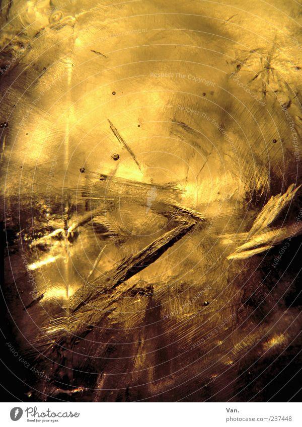 (W)Eiswein Getränk kalt gelb gold gefroren abstrakt Strukturen & Formen hell schön Hintergrundbild Farbfoto Nahaufnahme Detailaufnahme Textfreiraum oben Licht