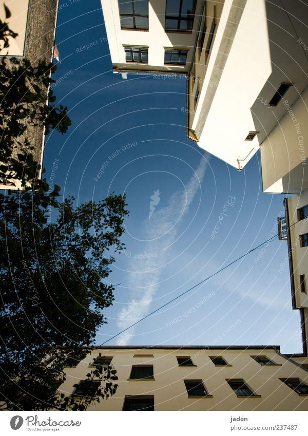 himmel überm hof in berlin Haus Himmel Schönes Wetter Gebäude Architektur Mauer Wand Fassade Fenster hoch blau Hinterhof Baum Außenaufnahme Menschenleer