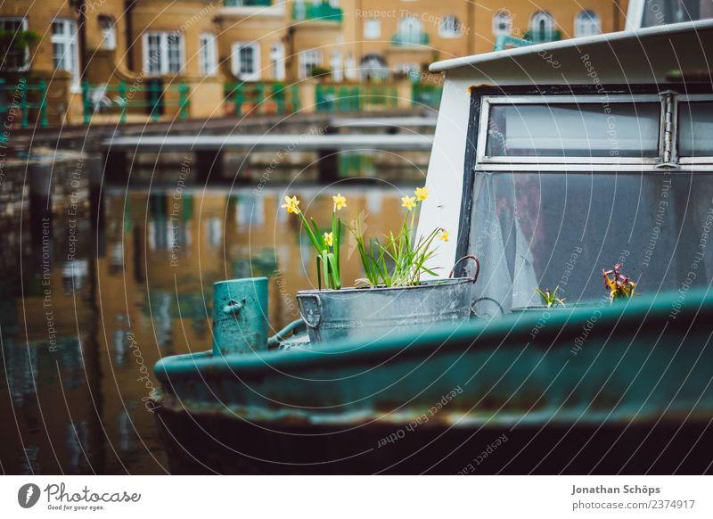 Blumen in Eimer auf einem Boot im Hafen Wasser Haus Freude Lifestyle gelb Frühling Liebe Glück grau Wasserfahrzeug Zufriedenheit Metall Lebensfreude Blühend